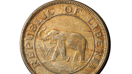 Elephant-coin-crop
