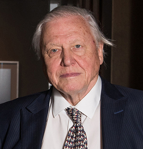 The 'Mail on Sunday' uses fake news to attack Sir David Attenborough