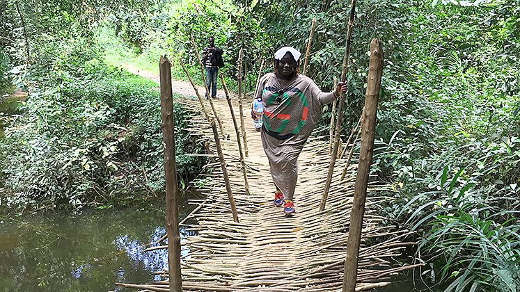 A lady does a canopy walk in Sierra Leone