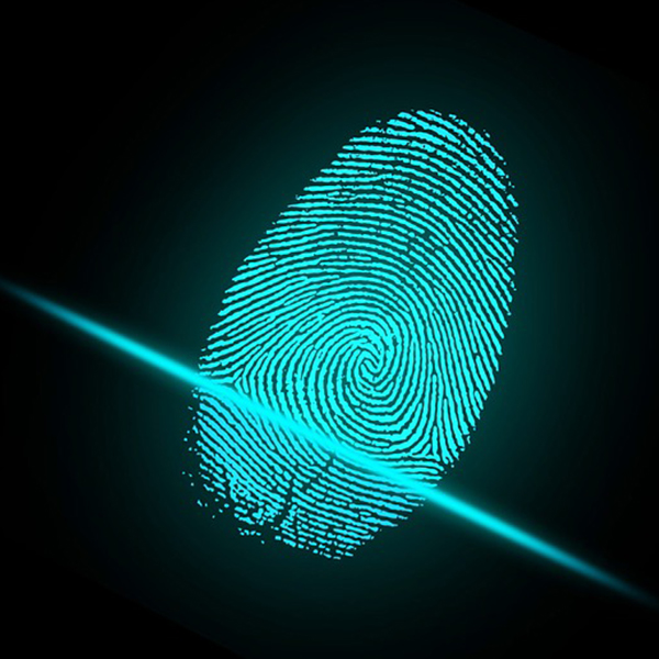 Image of a digital fingerprint