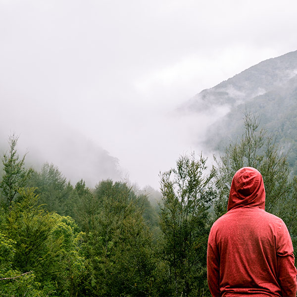 Image of a man looking out over a rain forest