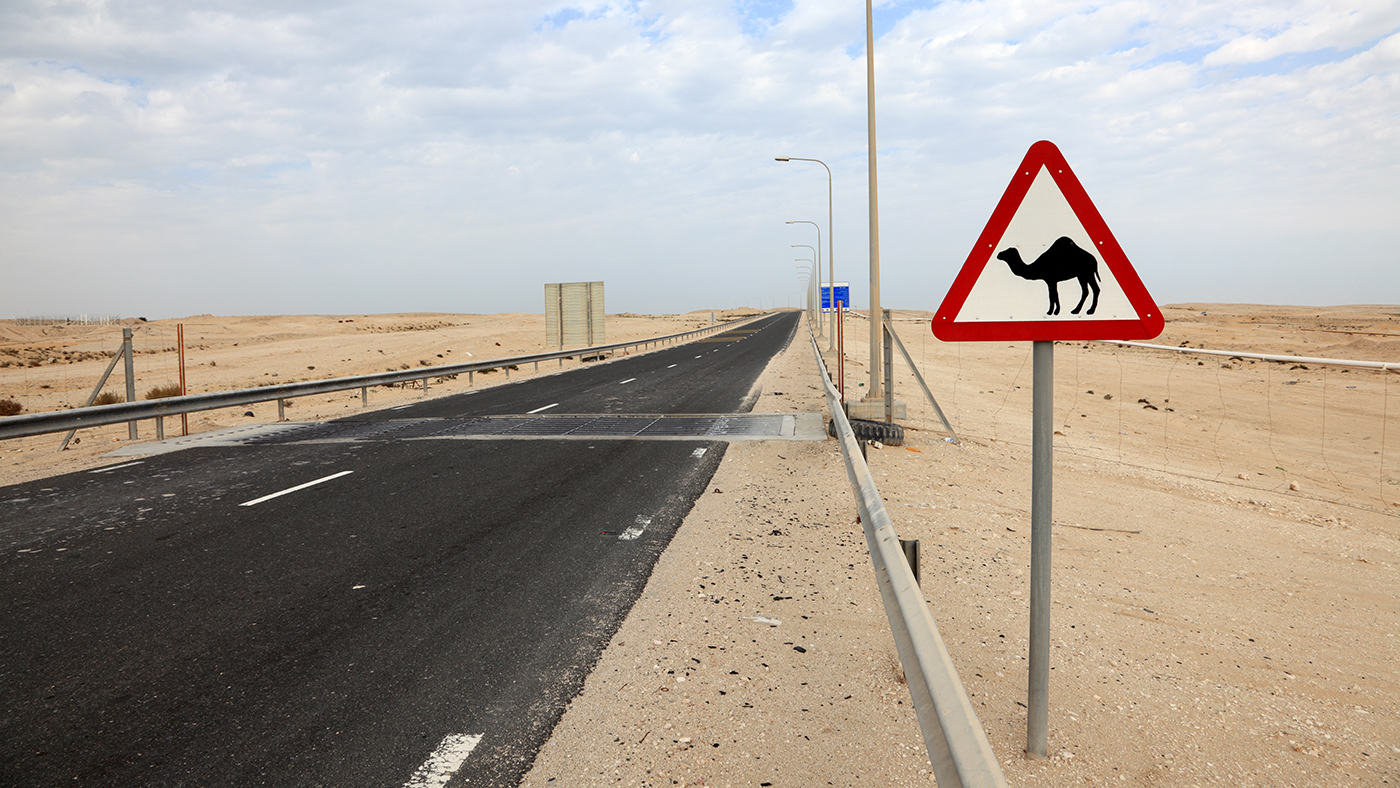 Sign with Camel on side of highway