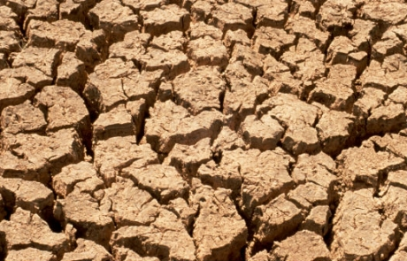 LSE Philosophers help Dutch Government respond to environmental challenges