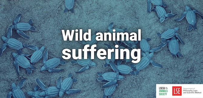 A beginner's guide to wild animal suffering (Co-Hosted with LSE SU Animals' Society)