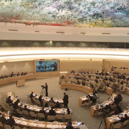 UN geneva - Human rights council Cropped