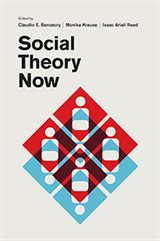 Krause_Social Theory Now