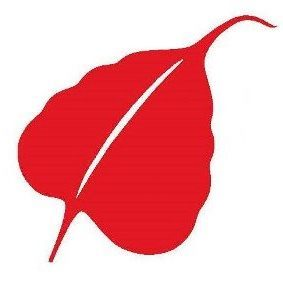 leaf of SAC logo