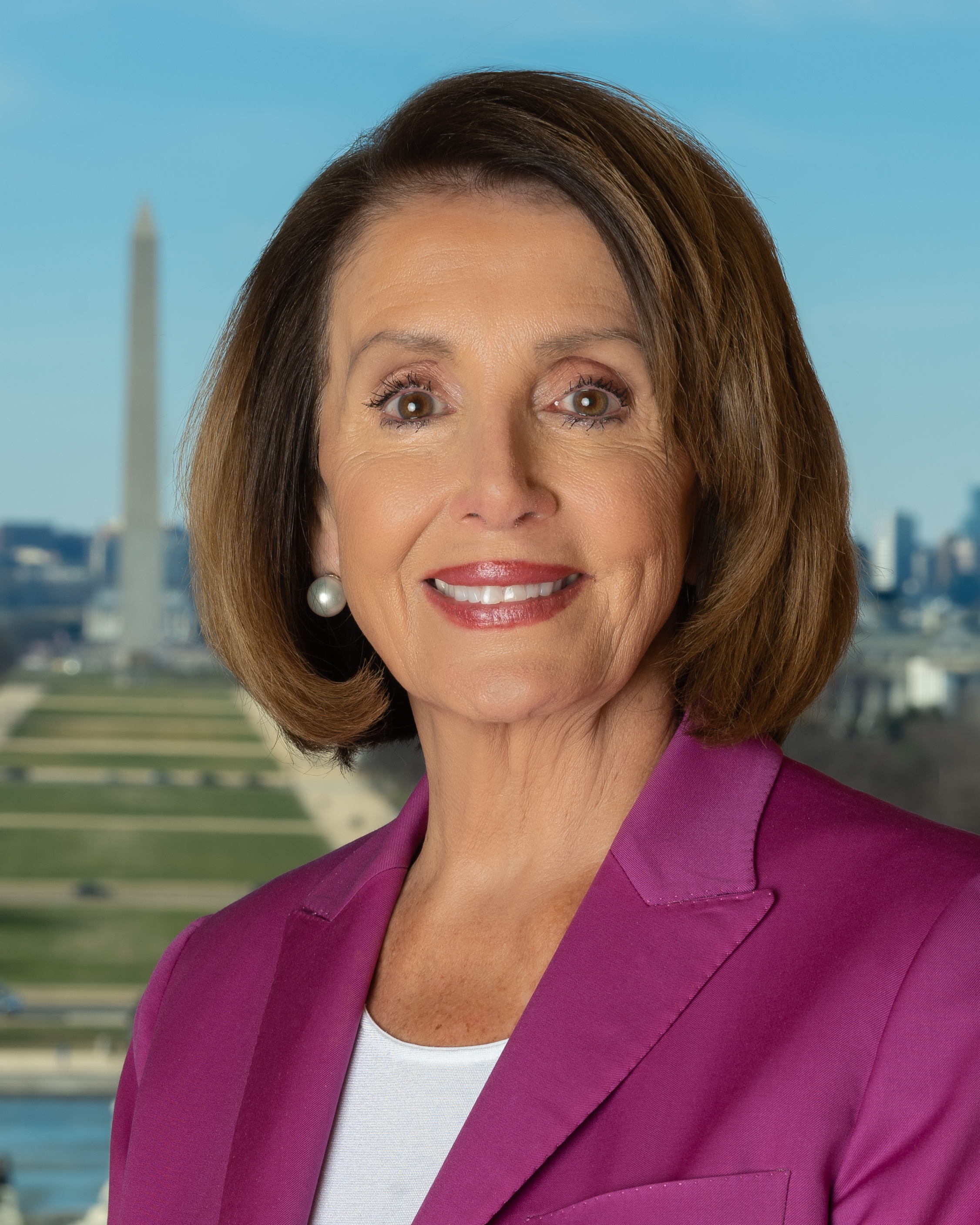 Nancy Pelosi.Official.Photo.Low.Res